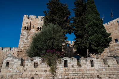 israel_156
