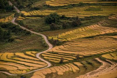 bhutan_083