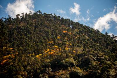bhutan_092