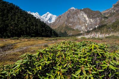 bhutan_107