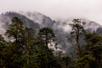 bhutan_116
