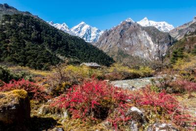 bhutan_220