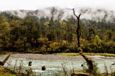 bhutan_224