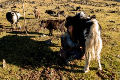 bhutan_259