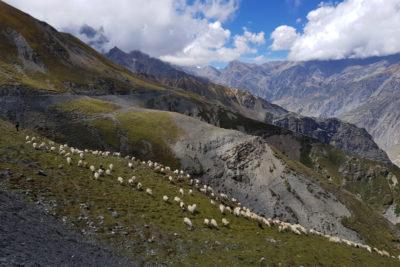 nepal_130