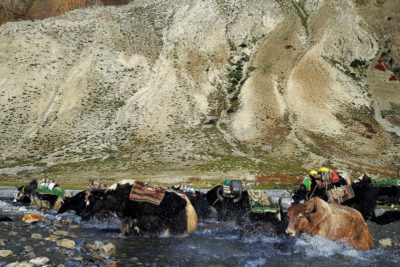 nepal_319