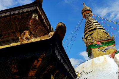 nepal_454