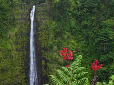hawaii_big_island_213