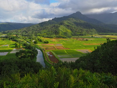 kauai_087